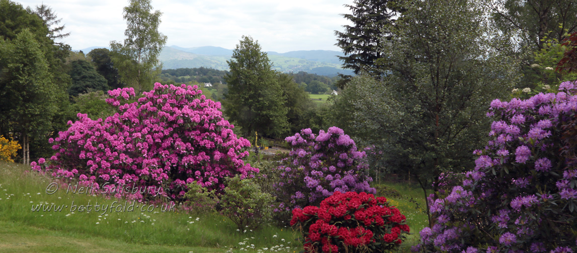 Self Catering Holidays in the Central Lake District at Hawkshead