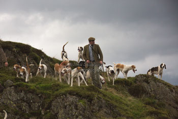 Foxhounds in Lakeland by Betty Fold Gallery