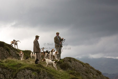 Hunting in Fells by Betty Fold Gallery