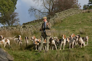 Teme Valley Foxhounds by Betty Fold Gallery