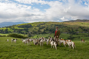 Coniston Foxhounds Photography by Betty Fold Gallery