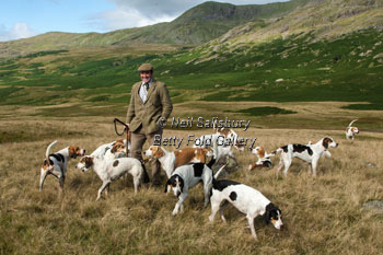 Foxhunting on the Coniston Fells by Betty Fold Gallery