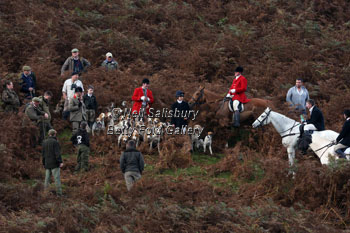 Foxhunting with the Teme Valley by Betty Fold Gallery