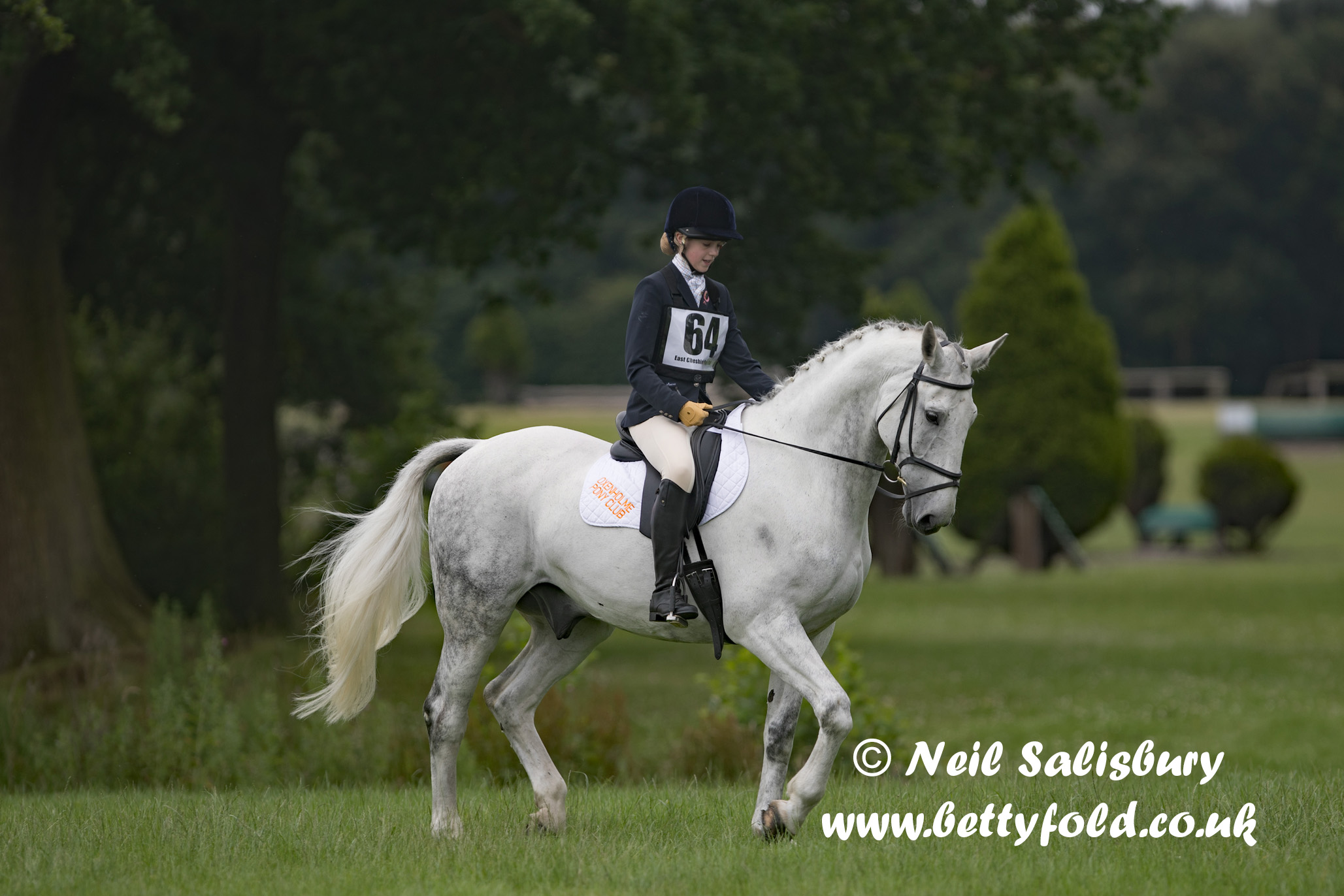 Oxenholme Pony Club Pictures by Betty Fold Gallery