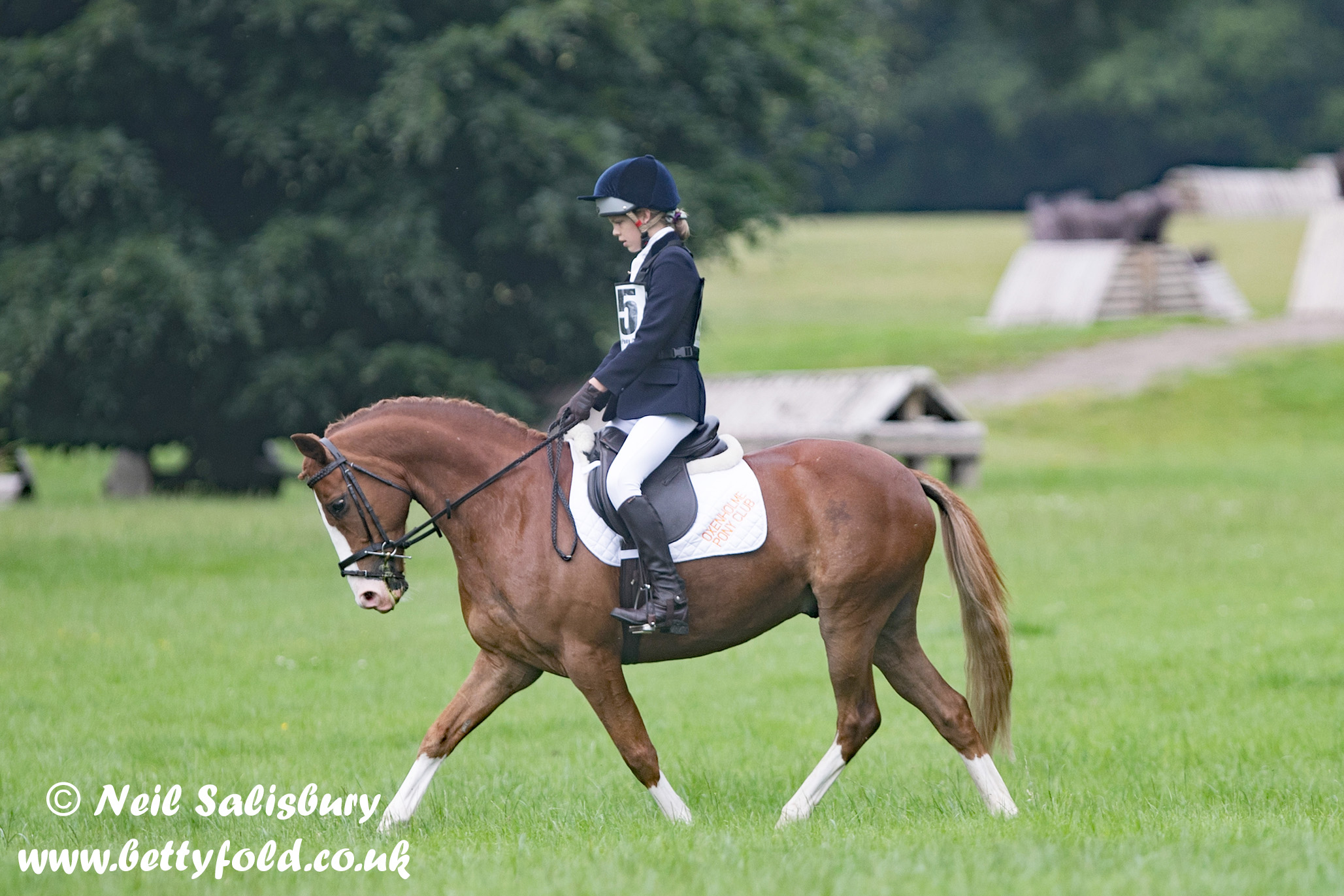 Oxenholme Pony Club Images