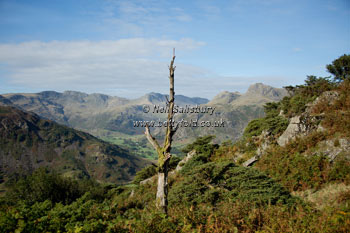 Great Langdale Images by Betty Fold Gallery