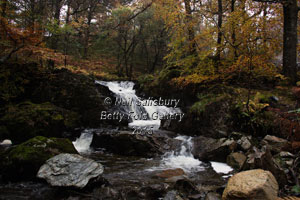 Waterfalls at Rydal by Betty Fold Gallery
