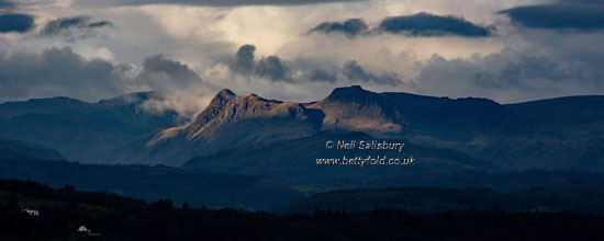 Langdale Pikes Photography by Betty Fold Gallery