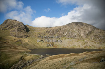 Langdale Photography