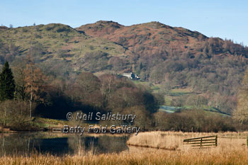 Lake District Photography by Betty Fold Gallery