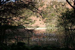 Brotherswater by Betty Fold Gallery