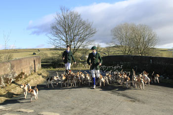 Stowe Beagles in the Yorkshire Dales by Betty Fold Gallery