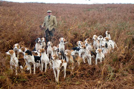 Hunting Photography by Betty Fold Gallery of Cumbria