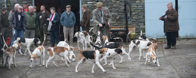 Hounds in Kentmere