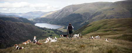 Thirlmere hunting
